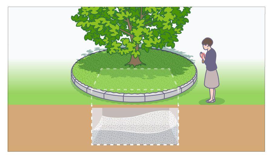 シンボル共有・骨壺なしの樹木葬